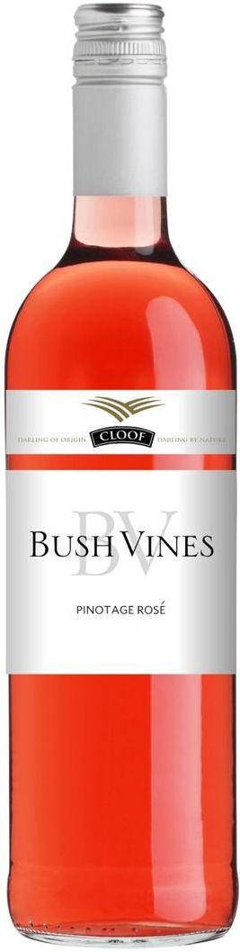 Cloof, Bush Vines, Rose